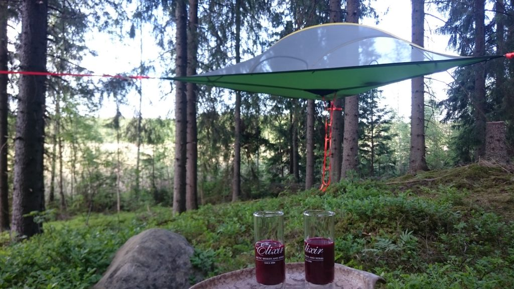Welcoming toasts of Finnish berry and herbal drink are served before settling to camping life.